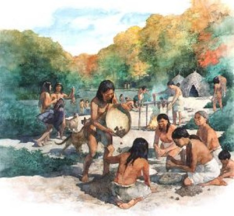 Hunter Gatherer Homes The Hunter-gatherers Also Used